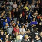 Fans cheer on their team during the Nuggets v. Pistons basketball game on Saturday.  The Pistons...