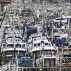 Fishing boats are seen docked in a harbour as Typhoon Saola approaches the northeastern coastal...