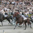 Flashing Red (nearest to camera) pulls out all the stops to win the 2007 New Zealand Trotting Cup...