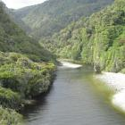 Gorge River, South Westland. Photo by Marjorie Cook.