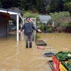 Henley resident Kerrie Hooper takes stock of his property after floodwater begin to recede...