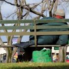 homeless.jpg_crop2.jpg