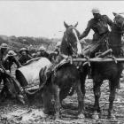 Horses struggle with the mud at Passchendaele in 1917. Photo from Kippenberger military archive...