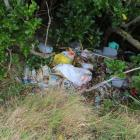 Household rubbish found dumped at John Wilson Ocean Dr in March. File picture
