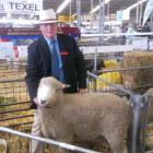 Hugh Taylor had  success with his Romney sheep at the Canterbury A&P Show, including this ram...