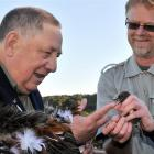 Huirapa upoko (chief) David Ellison, of Karitane, blesses a robin from the Silver Peaks held by...