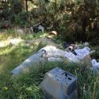Illegally dumped rubbish is a growing problem around Dunedin's forests. Photo supplied.