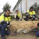 In the sustainable garden they built in Dunedin for Otago Polytechnic's Living Campus project are...