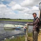 Invercargill agricultural and engineering consultant John Scandrett inspects the biogas recovery...
