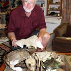 Invercargill teacher and naturalist Lloyd Esler at his Otatara home, with the turtle skeleton he...