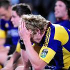 It has been a tough few years for the Highlanders, who have lost 26 of their 35 games under coach...