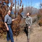 Jamie Cowan (right) and Peter Raal, both from the Department of Conservation, assess the dying...