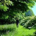 Janet Blair strolls through her garden near Lake Hayes at the weekend. It is one of two New...