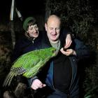 John Burke and Louise van de Vlierd, of Dunedin, hand-feed kakapo Sirocco at the Orokonui...