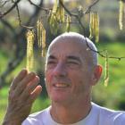 Karitane organic gardener Andy Barratt with one of his hazelnut trees. Photo by Peter McIntosh.