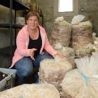Kate Wendelgelst with some of the bags of sawdust, straw and compost in which the mushrooms grow....