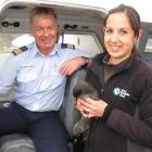 Kiwi Birdlife Park wildlife manager Nicole Kunzmann holds a sooty shearwater,  which was given a...