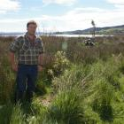 Lake Waihola Waipori Wetlands Society chairman Robert Girvan says that glyphosate spraying to...