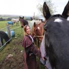 Highland Horse Haven director Lauren Moses walks with some of the horses being rehabilitated at...