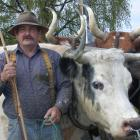 Lester Rowntree believes his farm show venture has the potential to become the best in the...
