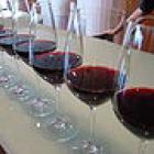 line-of-wines.jpg