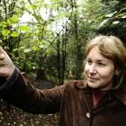 Lisa Burton, programme manager at the Otago Polytechnic School of Natural Resources, inspects a...
