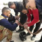 Members of the Free Syrian Army check ammunition in al-Bayada district in Homs yesterday. Most...