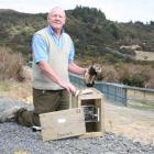 Michael Fay displays a ferret and stoat caught outside the fence, and a Department of...