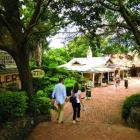 Montville is a cracker of a town to visit in the Sunshine Coast's hinterland.