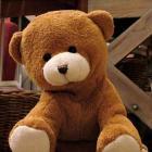 Nalle_-_a_small_brown_teddy_bear.jpg