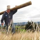 Ben Nolan at work on an East Taieri subdivision. Nolan is hoping to force his way back into the...