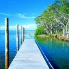 Noosa Everglades are worth a tour