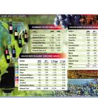 NZ wine stats