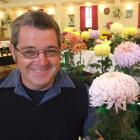 Wayne Shaw with one of his chrysanthemums at the North Otago Horticultural Society's show at the...
