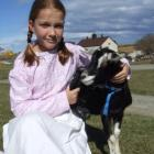 Victorian miss... Eva Liardet (9) takes Porky the goat for a walk at the Totara Estate Harvest...