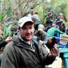 Orokonui conservation manager Elton Smith releases one of 50 saddlebacks in  the sanctuary...