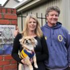 Otago rugby supporters Margaret Grundy, Stu Carse and their chihuahua-maltese cross Emma show...