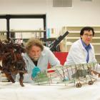 Otago Settlers Museum senior conservator Francois Leurquin (left) and conservator Laurence Le Ber...