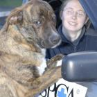 Otago SPCA animal attendant Donna Hurring (23) with Labrador-boxer cross Jack (2), a dog up for...