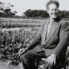 Patriarch of van Eeden Tulips  the late Jacques van Eeden pictured at his West Plains property,...