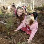 Pine Hill School pupils Jasmine Mumford (10), left, and Holly Bliss (5) plant native shrubs at...