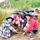 Planting coprosma to provide shelter for little blue penguins at Pilots Beach yesterday  are St...