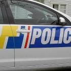police_car_closeup.jpg