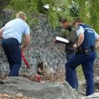 Police examine the scene beside a lakeside embankment in Queenstown where a male suffered a...