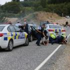 Police made arrests following the chase, near Arrowtown about 9.30am. Photo: Blair Pattinson