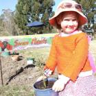 Quinn Plunkett (5) in front of the sign she painted in the swan plant bed at the Waitaki...
