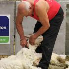 Rakaia shearer and Shearing Sports New Zealand South ...