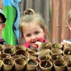 Reid Park Kindergarten children (from left) Levi Nicol (4), Freya Stevenson (4) and Sam Pool (3)...