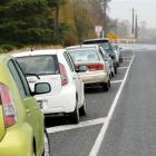 Rental cars parked in Miller Rd, near the turn-off to Dunedin International Airport, yesterday....