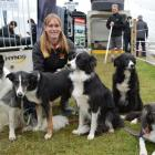 Rotorua woman Chelsea Marriner with five of her trained dogs (from left) Shift, Flash, Spy, Quest...